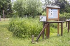 Stagno del Centro visite della Riserva naturale Valle Cavanata